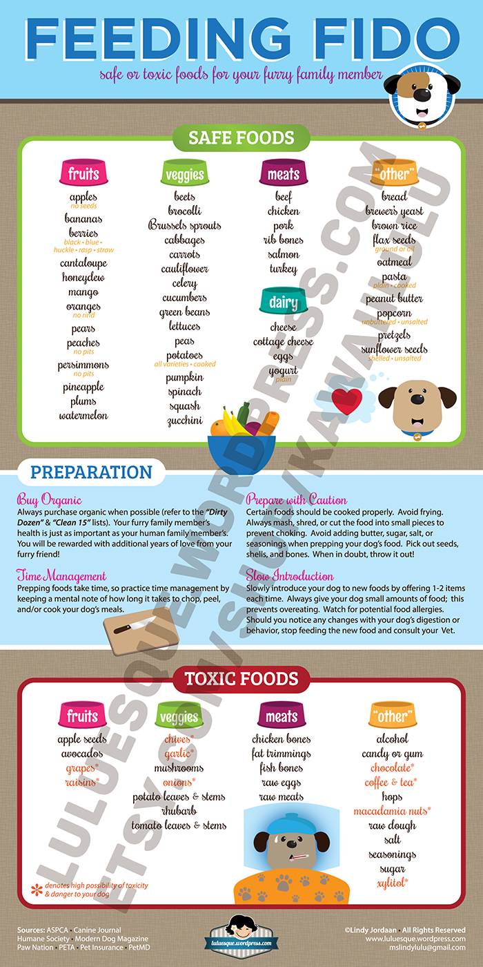 Foods To Avoid Feeding Your Dog
