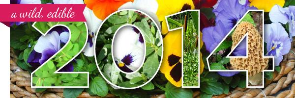 luluesque.wordpress.com-wild edible plants