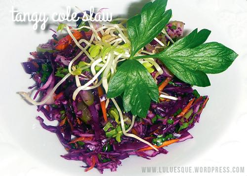 luluesque-tangy-slaw-salad1
