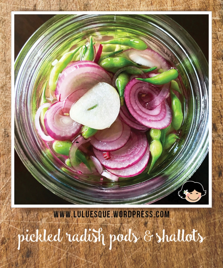 luluesque_pickled radish pod-shallots-1